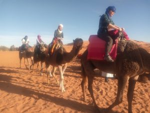 1 hour Camel trekking in Merzouga