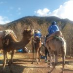 Ourika Camel Ride