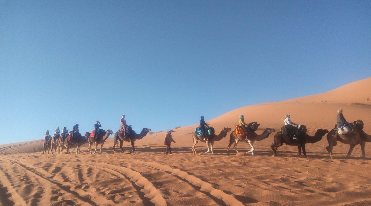 camel trekking in Merzouga