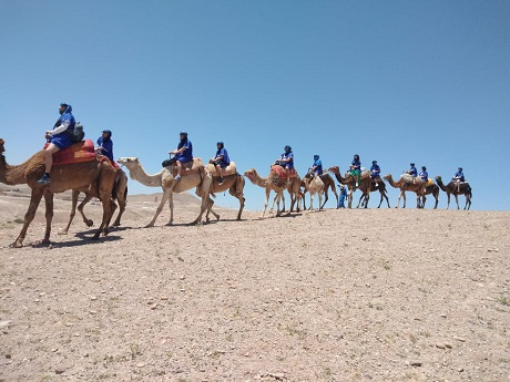 Camel Ride in Agafay Desert