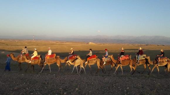 Camel ride in Agafay desert