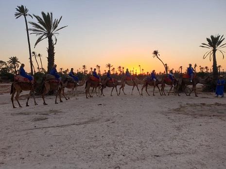 sunset camel ride marrakech
