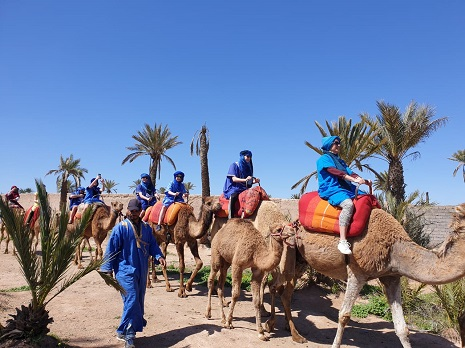 Cheap Camel Ride in Marrakech