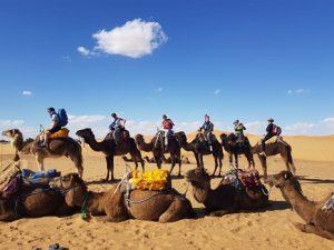 3 days desert tours