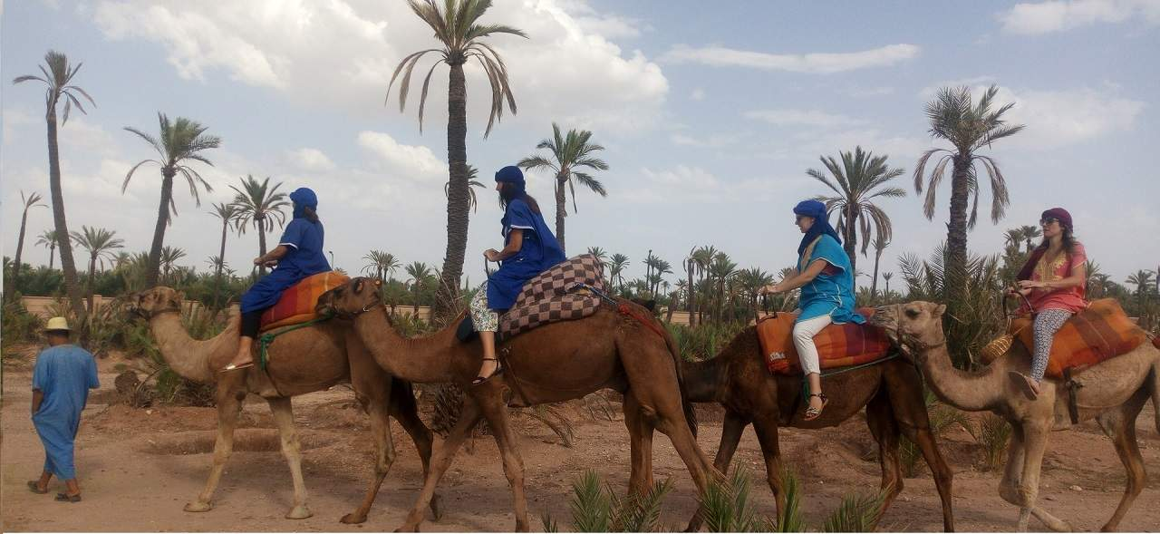 Camel Ride Marrakech – Agafay Camel Ride – Marrakech day trips