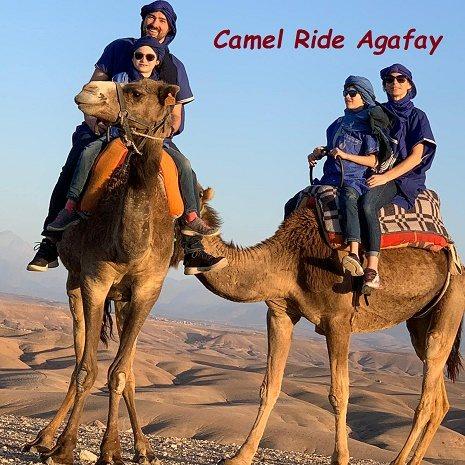 camel ride Agafay